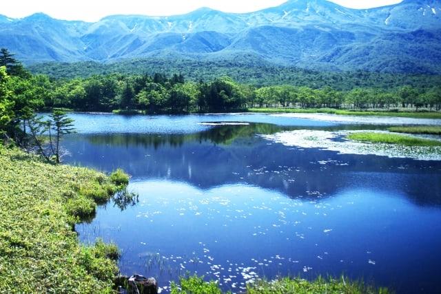 【知床】季節海氷域に位置する日本最北の世界遺産|手つかずの大自然に関する情報まとめ